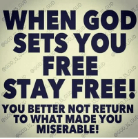 Memes, Blogspot, and 🤖: WHEN GOD  SETS YOU  FREE  STAY FREE!  YOU BETTER NOT RETURN  TO WHAT MADE YOU  MISERABLE! www.adriennelitmon.blogspot.com