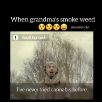 Memes, Weed, and Content: When grandma's smoke weed  @mutebitch3  Adult Content  I've never tried cannabis before. 😯😯😯😯😅😅😂😂😂❤ justmutey3