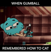 gumballs: WHEN GUMBALL  REMEMBERED HOW TO CAT