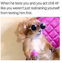 Af, Chill, and Memes: When he texts you and you act chill AF  like you weren't just restraining yourself  from texting him first. 😎 rp @humor_me_pink goodgirlwithbadthoughts 💅🏼 ( photo credit @prairiedogpack )