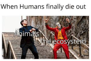 Commit human't: When Humans finally die out  Animals  The ecosystem  p2sT.cO Commit human't