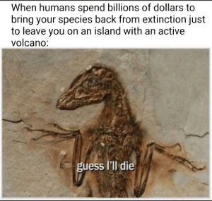 Jurrasic World 2 plothole: via /r/memes https://ift.tt/2B0xg61: When humans spend billions of dollars to  bring your species back from extinction just  to leave you on an island with an active  volcano:  guess I'll die Jurrasic World 2 plothole: via /r/memes https://ift.tt/2B0xg61