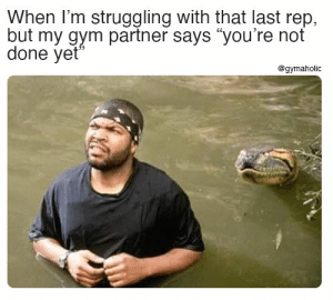 "When I'm struggling with that last rep, but my gym partner says ""you're not done yet""  Gymaholic App: https://www.gymaholic.co  #fitness #motivation #workout #meme #gymaholic: When I'm struggling with that last rep, but my gym partner says ""you're not done yet""  Gymaholic App: https://www.gymaholic.co  #fitness #motivation #workout #meme #gymaholic"
