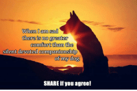 Truth!: When I am sad  there is no greater  comfort than the  silent devoted companionship  of my dog  SHARE if you agree! Truth!