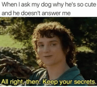Cute, Taken, and Hope: When I ask my dog why he's so cute  and he doesn't answer me  All right then. Keep your secrets. I hope everyone is taken care of their furry companion this lovely Saturday 🐶