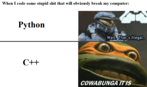 Youre the boss: When I code some stupid shit that will obviously break my computer:  Python  Wait. That's illegal  COWABUNGA ITIS Youre the boss