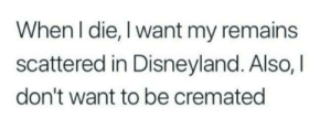 meirl: When I die, I want my remains  scattered in Disneyland. Also, I  don't want to be cremated meirl