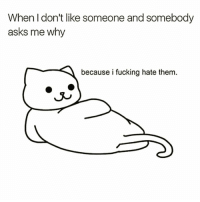 Fucking, Funny, and Meme: When I don't like someone and somebody  asks me why  because i fucking hate them. This is us @meme.w0rld 😈😭