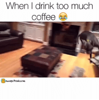 Energy, Memes, and Prank: When I drink too much  coffee  ownage Pranks.com SO MUCH ENERGY!  Like our page for MORE funny videos! => OwnagePranks (Original video credit: 'Life in the Dog House' on YouTube https://www.youtube.com/watch?v=k8w4PIuzLI4)