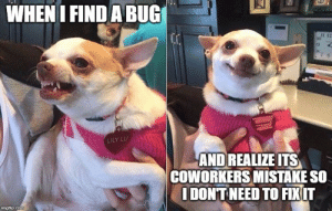 Finding a bug: WHEN I FIND A BUG  LILY LU  AND REALIZE ITS  COWORKERS MISTAKE SO  IDONT NEED TO FIXIT  imgflip.com Finding a bug