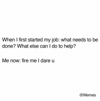 Dank, Fire, and Memes: When I first started my job: what needs to be  done? What else can I do to help?  Me now: fire me I dare u  @Memes Sad but might be true