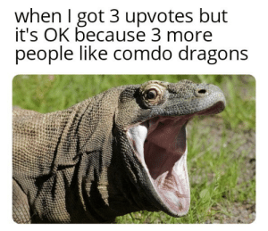 Dank, Meme, and Memes: when I got 3 upvotes but  it's OK because 3 more  people like comdo dragons And the next dead meme comes here by Heavoc_pepe MORE MEMES