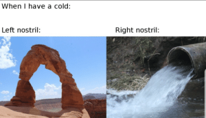 I hate being ill…: When I have a cold:  Right nostril  Left nostril: I hate being ill…