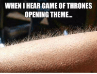 Game of Thrones, Game, and Thrones: WHEN I HEAR GAME OF THRONES  OPENING THEME... https://t.co/rYI9ZWxzU9