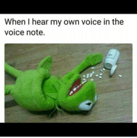 Memes, The Voice, and Voice: When I hear my own voice in the  voice note.