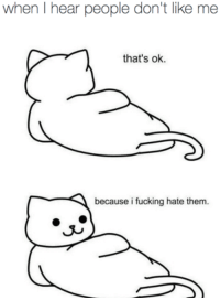 Fucking, Memes, and 🤖: when I hear people don't like me  that's ok.  because i fucking hate them.