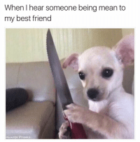 Best Friend, Funny, and Memes: When I hear someone being mean to  my best friend  ownage Pranks Will cut you 😂  Like Ownage Pranks for MORE funny posts!