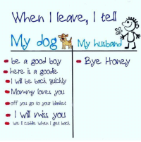 Memes, Good, and Back: When I leave, I te  My dog My husbn  be a good boyBye Honey  -here i a goo.le  ol Will be boack guickly  Mony loves you  off you go to your blonket  -I wll s you  we  cudble when 1 get back How I say goodbye!