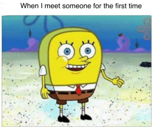 Well hello there!: When I meet someone for the first time Well hello there!