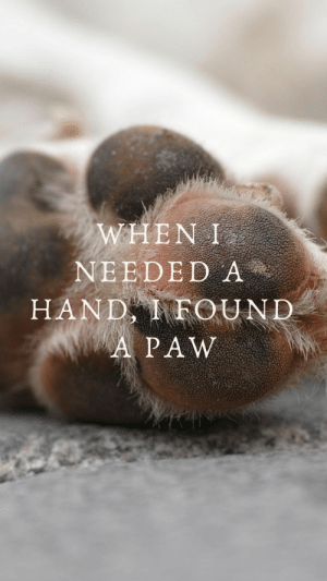 : WHEN I  NEEDED A  HAND FOUND  A PAW