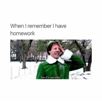 Homework, Girl Memes, and Nutcracker: When I remember I have  homework  Son of a nutcracker!