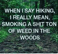 Shit, Smoking, and Weed: WHEN I SAY HIKING,  I REALLY MEAN,  SMOKING A SHIT TON  OF WEED IN THE  WOODS Wanna take a hike?