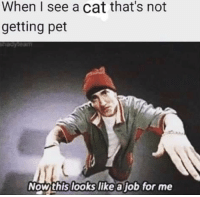 Cat, Pet, and For: When I see a cat that's not  getting pet  Nowthis looks like ajob for me
