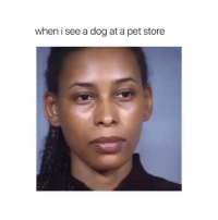 Dog, Pet, and Store: when i see a dog at a pet store Follow @hahasavage for more!