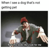 This Looks Like A Job For: When I see a dog that's not  getting pet  shedyteam  Now this looks like a job for me