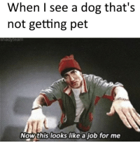 awesomacious:  Old meme but a wholesome one: When I see a dog that's  not getting pet  shedyteam  Now this looks like a job for me awesomacious:  Old meme but a wholesome one