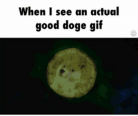 Much wow https://t.co/A2ggecrIbl: When I see an actual  good doge gif Much wow https://t.co/A2ggecrIbl