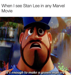 Respect, Stan, and Stan Lee: When I see Stan Lee in any Marvel  Movie  It's enough to make a grown man cry Nothing but respect