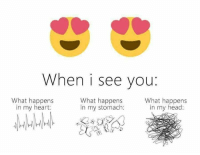 Pretty much yes 💗💯💗💯🍀 butterflies? More like the whole damn zoo 🐶🐺🐱🐭🐹🐰🐸🐯🐒🐵🐗🐮🐽🐷🐨🐴🐑🐘🐼🐧🐦🐞🐢🐌🐙🐟🐬🐬🐟🐠🐚🐋🐳🐎🐉🐇🐅🐃🐀🐏🐄🐐🐓🐕🐖🐁🐂🐲🐡🐩🐈🐆🐆🐪🐫🐊: When i see you  What happens  What happens  What happens  in my head:  in my heart:  in my stomach: Pretty much yes 💗💯💗💯🍀 butterflies? More like the whole damn zoo 🐶🐺🐱🐭🐹🐰🐸🐯🐒🐵🐗🐮🐽🐷🐨🐴🐑🐘🐼🐧🐦🐞🐢🐌🐙🐟🐬🐬🐟🐠🐚🐋🐳🐎🐉🐇🐅🐃🐀🐏🐄🐐🐓🐕🐖🐁🐂🐲🐡🐩🐈🐆🐆🐪🐫🐊