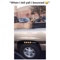 "Funny, Lmao, and Twitter: ""When i tell yall i bounced ""  I shook Lmao I would've been gone 👉🏽(via: kdcamp11-twitter)"