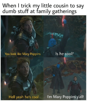 Dank, Dumb, and Family: When I trick my little cousin to say  dumb stuff at family gatherings  You look like Mary Poppins  Is he cool?  Hell yeah he's coolI  I'm Mary Poppins yall Got em by Yowley FOLLOW HERE 4 MORE MEMES.