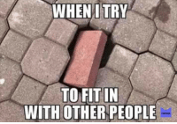 True: WHEN I TRY  TO FIT IN  WITH OTHER PEOPLE  MEMES True