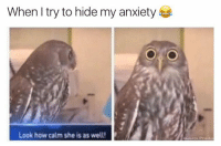 Funny, Memes, and Anxiety: When I try to hide my anxiety  Look how calm she is as well!  oumate Pranks So calm 😆  Like Ownage Pranks for MORE funny pics!