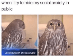Dank, Memes, and Target: when i try to hide my social anxiety in  public  Look how calm she is as well! Heartbeat intensifies by disisbeyondscience MORE MEMES