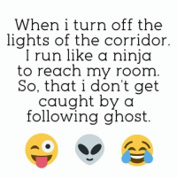Ninja: When i turn off the  lights of the corridor  I run like a ninja  to reach my room  So, that i don't get  caught by a  following ghost