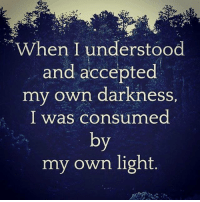 consumate: When I understood  and accepted  my own darkness  I was consumed  by  my own light