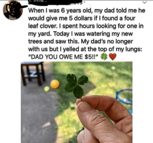 "I could use $5: When I was 6 years old, my dad told me he  would give me 5 dollars if I found a four  leaf clover. I spent hours looking for one in  my yard. Today I was watering my new  trees and saw this. My dad's no longer  with us but I yelled at the top of my lungs:  ""DAD YOU OWE ME $5!!""  NET I could use $5"
