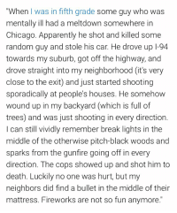 """Apparently, Chicago, and Memes: """"When I was in fifth grade some guy who was  mentally ill had a meltdown somewhere in  Chicago. Apparently he shot and killed some  random guy and stole his car. He drove up 1-94  towards my suburb, got off the highway, and  drove straight into my neighborhood (it's very  close to the exit) and just started shooting  sporadically at people's houses. He somehovw  wound up in my backyard (which is full of  trees) and was just shooting in every direction  I can still vividly remember break lights in the  middle of the otherwise pitch-black woods and  sparks from the gunfire going off in every  direction. The cops showed up and shot him to  death. Luckily no one was hurt, but my  neighbors did find a bullet in the middle of their  mattress. Fireworks are not so fun anymore."""" Mentally ill man on shooting spree wreaks havoc in suburban Chicago https://t.co/Fy6DV9oEII"""