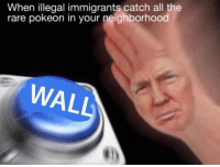 Sent by by Dylon, a supporter.: When illegal immigrants catch all the  rare pokeon in your neighborhood  WAL Sent by by Dylon, a supporter.