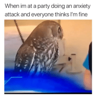 Ironic, Party, and Anxiety: When im at a party doing an anxiety  attack and everyone thinks I'm fine +eats CBD gummies @sundayscariescbd 🤣