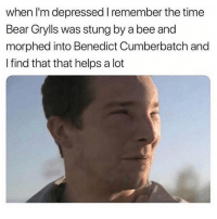 I'm deceased 😭😭 Get following @scouse_ma @scouse_ma @scouse_ma @scouse_ma: when I'm depressed I remember the time  Bear Grylls was stung by a bee and  morphed into Benedict Cumberbatch and  I find that that helps a lot I'm deceased 😭😭 Get following @scouse_ma @scouse_ma @scouse_ma @scouse_ma