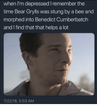 Amen: when I'm depressed I remember the  time Bear Grylls was stung by a bee and  morphed into Benedict Cumberbatch  and I find that that helps a lot  7/22/18, 5:03 AM Amen