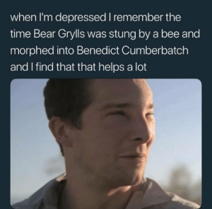 Funny, Bear, and Time: when I'm depressed I remember the  time Bear Grylls was stung by a bee and  morphed into Benedict Cumberbatch  and I find that that helps a lot It works via /r/funny https://ift.tt/2BQFZ9t