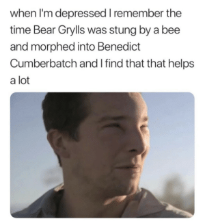 Bear Cumberbatch or Benedict Grylls? by tearing-me-apartLisa MORE MEMES: when I'm depressed I remember the  time Bear Grylls was stung by a bee  and morphed into Benedict  Cumberbatch and I find that that helps  a lot Bear Cumberbatch or Benedict Grylls? by tearing-me-apartLisa MORE MEMES