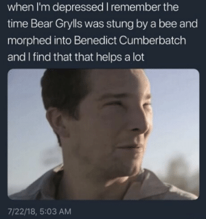 Dank, Memes, and Target: when I'm depressed I remember the  time Bear Grylls was stung by a bee and  morphed into Benedict Cumberbatch  and I find that that helps a lot  7/22/18, 5:03 AM Into the wild hardcore by curlysass FOLLOW HERE 4 MORE MEMES.