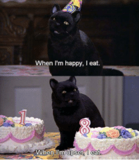 Memes, Sabrina, the Teenage Witch, and Happy: When I'm happy, I eat.  When l'm upset l eat  upset  0 Sabrina, the Teenage Witch